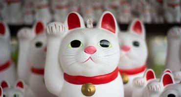 Tokyo, en snabb guide till en enorm stad