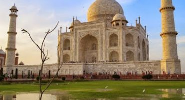 Kontrasternas resa i Indien och Qatar