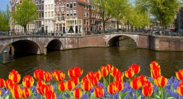 24 saker att hitta på i Amsterdam