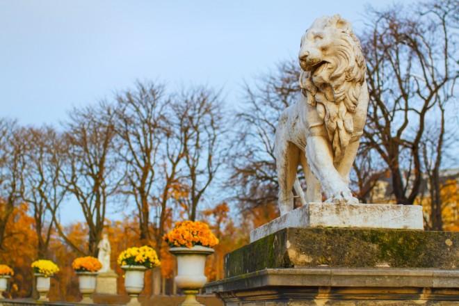 Ett lejon blickar ut över ett höstigt Jardin de Luxembourg