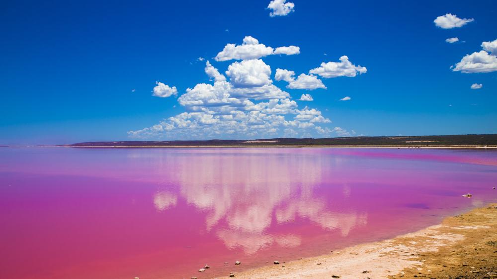 Rosa sjö i Australien.