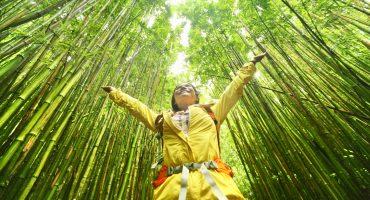 5 tips för ett hållbart resande