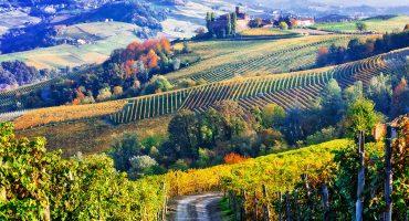 Skörda det bästa av Italien i höst